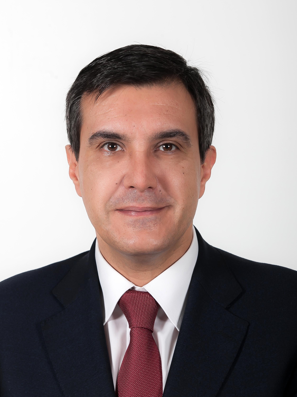 José Luis Ayllón, Diputado por el Partido Popular en el Congreso de los Diputados